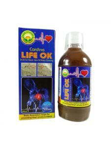 Basic Ayurveda Cardina Life OK Drink