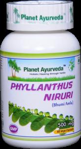 Planet Ayurveda Phyllanthus Niruri Capsule