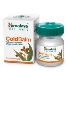 Himalaya Wellness Cold Balm