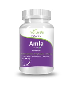 Natures Velvet Lifecare Amla Pure Extract 500mg Capsule